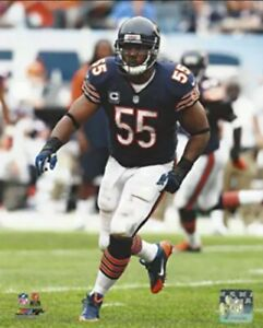 """Lance Briggs Chicago Bears NFL Action Photo (8"""" x 10"""")"""