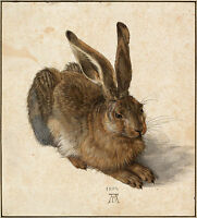"Albrecht Durer: Young Hare Painting -  8""x10""  Fine Art Print Real Canvas"