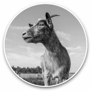 2 x Vinyl Stickers 20cm (bw) - Cute Grey Goat Farm Animal  #39110