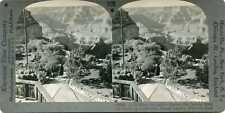 Grand Canyon Von El Tovar Hotel ~ Stereoskopie 29096 1126x Fast Neu