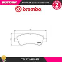 P61066-G Kit pastiglie freno a disco ant. Citroen-Peugeot (BREMBO)
