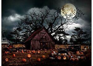 Pumpkin Haunted Halloween Quilt Fabric Panel 29-3/4in x 43-1/4in Hoffman