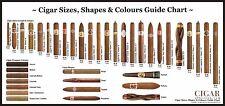 "Cigar Sizes Guide Chart 24x50"" Poster Silk view Men Smoke spirits pipe bar beer"