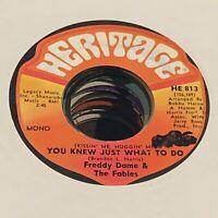 N. Soul DJ 45 - Freddy Dame/Fables - You Knew! VG++