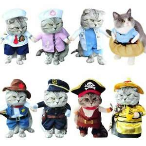 Collection of Awesome Cat Costumes