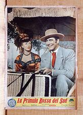 LA PRIMULA ROSSA DEL SUD fotobusta poster J.Payne J.Sterling Gray Vanquished K9