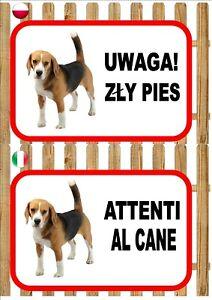 Beagle Beware Of The Dog sign UWAGA ZŁY PIES ATTENTI AL CANE Plaque