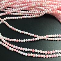 """15.5""""  - Natural Pink Queen Conch Shell 3mm Round Beads HQ, NEW DIY Design Rare"""
