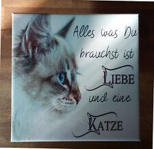 Dekofliese Wandbild Bildfliese Katze Spruch... (081) Geschenkidee Fliese