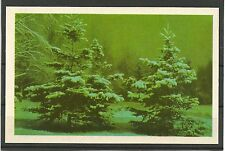 URSS 1971 New Year Russian Winter Winter Forest CONGRATULATION MC MK Russia NEW