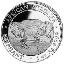 Somalia Elefant 2020 African Wildlife Elephant 1 OZ Silber Silver Argent