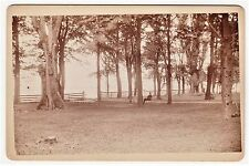 RARE Unique Photo - Foot of Owasco Lake Cabinet Photo ca 1880 Photographer ID