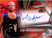 TNA CW Anderson 2010 Xtreme GOLD Authentic Autograph Card SN 91 of 99