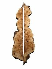 2x Pappel Maser Brett Knolle Maserholz 103/117x7/17cm 45/46mm