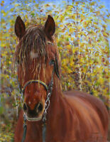 Horse stallion ORIGINAL canvas oil painting fine art signed. Radik Shafiev.