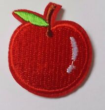 Red apple Embroidered Iron On Sew On Patch Dress Bag tshirt Jacket Skirt