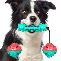Dog Chew Toy for Aggressive Chewers, Dental Chew Toys for  Puppy