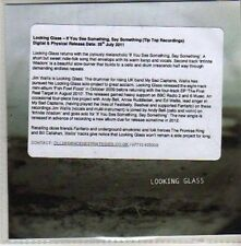 (CA872) Looking Glass, If You See Something Say Something - 2011 DJ CD