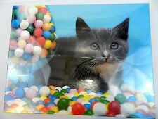 "Sweet Tooth Kitten Bubble gum Balls Animal 550 Piece Jigsaw Puzzle 18"" x 24"