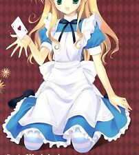 VOCALOID 2 HATSUME MIKU Alice In Musicland Cosplay Costume Custom Any Size