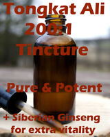 Tongkat Ali Tincture 200:1 50ml - Potent wild harvested super extract! Long Jack
