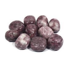 Lepidolite Tumble Stone, 20-25 mm 5 Pack (Crystal Healing Reiki)