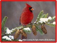 Inspirational Red Cardinal Hope Refrigerator Fridge Magnet Gift Item