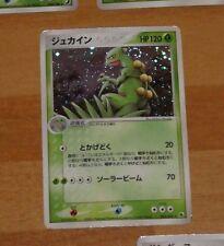POKEMON JAPANESE RARE CARD HOLO CARTE 003/055 Sceptile junko MADE IN JAPAN **
