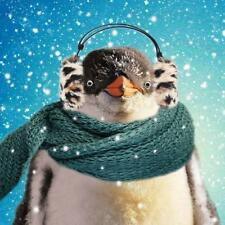 Festive Penguin Googlies Christmas Card Tracks Wobbly Eyes Greeting Cards