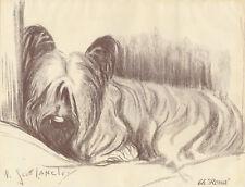 Vintage Skye Terrier Dog Champion Rona Art Print 1935 by Nina Scott Langley