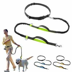 Retractable Hands Free Dog Leash Dual Handle Bungee Reflective Up To 150 Lbs Dog