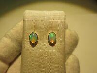 Edel Opal Ohrstecker Opal Earrings 925 Silber Nr. E8083
