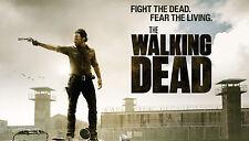 Poster 42x24 cm The Walking Dead Rick Grimes 02