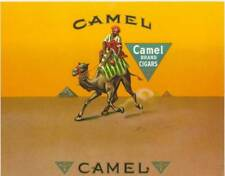 Camel Arab desert Pyramids  original vintage unused paper  cigar box label