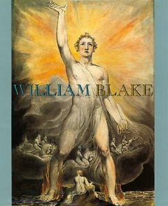 WILLIAM BLAKE By Robin Hamlyn & Michael Phillips - Hardcover Excellent Condition