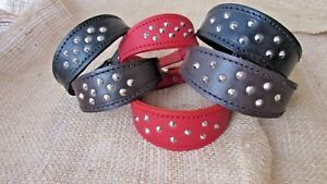 Whippet collars studded leather,  various colours.