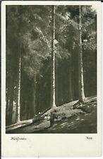 Ansichtskarte Waldfrieden - schöne Aufnahme - Poststempel Hamburg 1938
