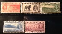 Newfoundland 5 mint stamps, 1937 Coronation issue