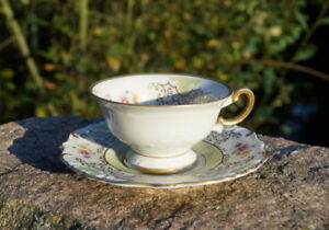 Antique Mocha Dishes Memory Porcelain Eschenbach Seltenes Collector's Item