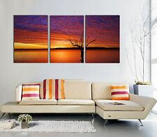 X-Large Modern Wall Art .Fully framed. Ready to hang. 3 Panel. 120x80cm special