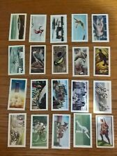 ABC A.B.C. minors cinema trade cards: odds/part-sets Birds Sports Water Land etc