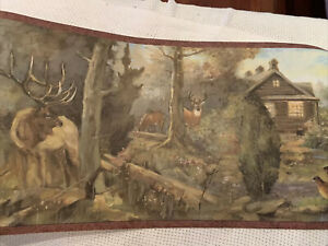 Wallpaper Border Forest Theme - 10m Roll Sealed Plus Partially Used Roll
