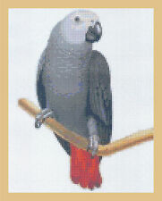 African Grey Parrot Counted Cross Stitch  Full Kit