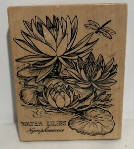 PSX WATER LILIES Lily Botanical Blooms Flowers Floral K-1438 Rubber Stamp