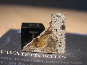 Meteorite NWA 6945, Rare Polymict Diogenite, Asteroid Vesta deep crust...