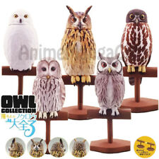 OWL COLLECTION V3 (SET 5 PCS) KAIYODO JAPAN