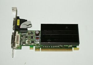 PNY Nvidia Geforce 8400GS 256MB PCIE 2.0 VGA/DVI Graphics Card