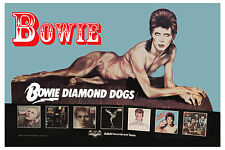 1970's Rock: David Bowie * Diamond Dogs * Promotional Poster 1974
