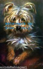 Antique Art~Yorkshire Terrier Dog~Red Pillow~Maud West Watson~ New Lg Note Cards