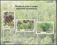 LAOS Blocco N°186 , Fiori, piante Medicinali, 2010, medicinali Plants Foglio MNH